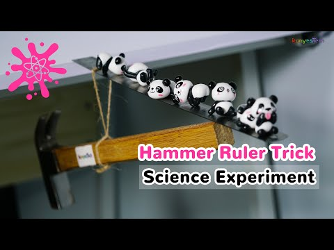 Hammer Ruler Balancing Trick