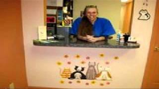 Cat Grooming Services | Feline Fabulous Charlotte