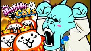 FORBIDDEN BRIDE PART 2   The Battle Cats (Part 84)   Update 7.2, Reaction