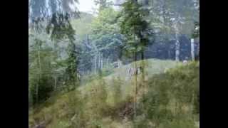 Wanderung auf den Fuderheuberg (Piding)