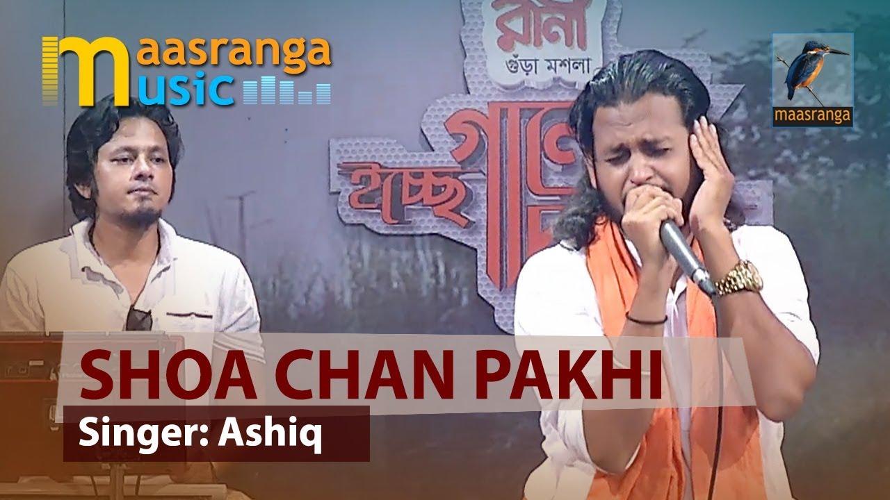 soachan pakhi song