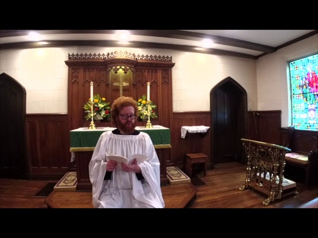The Sixth Sunday after Pentecost 7.12.20