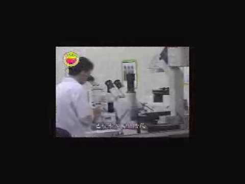 臺灣生物科技