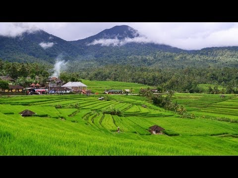 Top 20 Best Things to do in Bali Indonesia