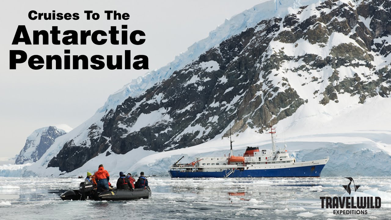 Antarctica cruise visiting the antarctica peninsula for Can you visit antarctica