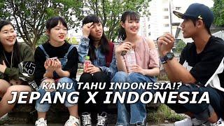 Cewe jepang tau indonesia