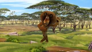 Video Musical Of Madagascar
