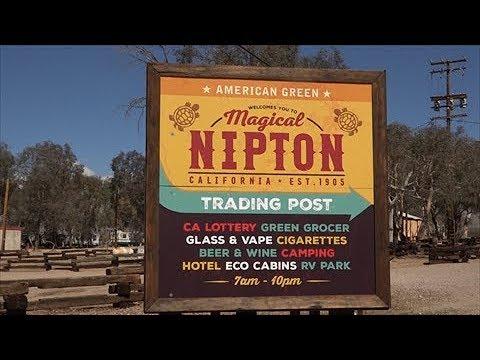 Nipton, CA Update March 14th