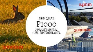 My New Nikon Coolpix P1000 (125x Zoom, 24-3000mm)