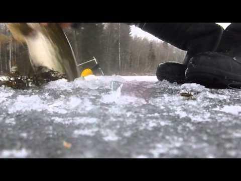 Детские зимние комбинезоны для мальчиков омск