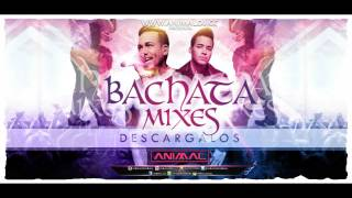 Bachata Mix 1  - Animal Dj (www.animaldj.co)