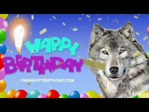 Cute Little Pig Singing Happy Birthday Song BY #TOOTHKILL from YouTube · Duration:  24 seconds
