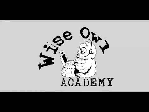Online English Lessons with Wise Owl Academy