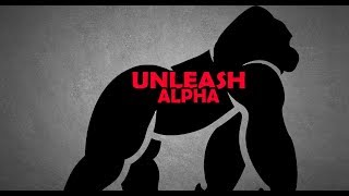 HOW TO BE ASSERTIVE   LIKE THE ALPHA
