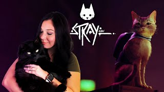 Checking out the latest Stray trailer   Need more cat games!!