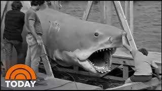'Jaws' Still Takes A Big Bite Of Popular Culture After 45 Years | TODAY
