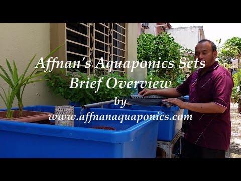 Affnan's Aquaponics - A Brief Overview Of My Aquaponics Sets