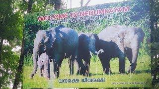 നെടുംകയം നിലമ്പൂർ || Nedumkayam nilambur travel video by travelotech