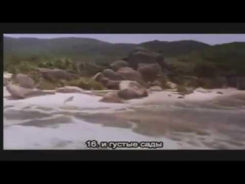 Абу Бакр Аш Шатри
