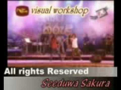 Seeduwa sakura-Budune