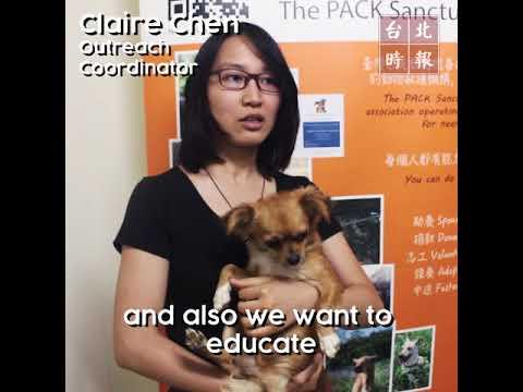 台北時報報導Taipei Times Interview- 臺灣巴克The PACK Sanctuary