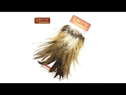 Whiting Coq De Leon Rooster Saddle Fly Tying Feathers