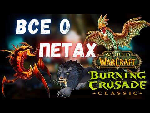 Все о петах Охотников | Полный гайд о питомцах | WoW Burning Crusade Classic