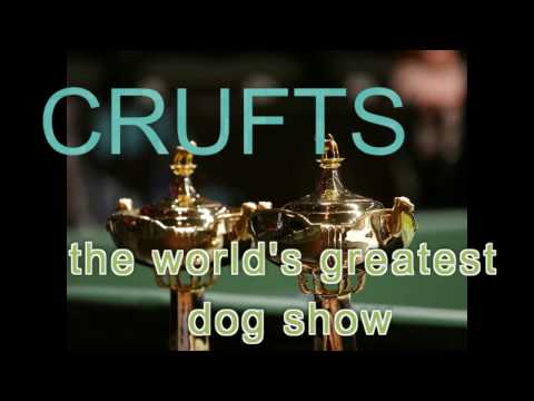 CRUFTS 2017   The World's Greatest Dog Show  - the DOCUMENTARY