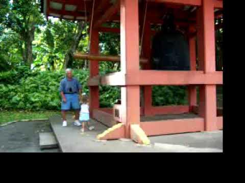 Hawaii 2004 100 0258