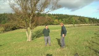 How to Plan a Wood | Woodland Trust
