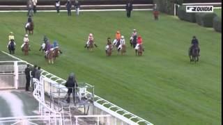 course de poneys - Auteuil - 2/11/2014
