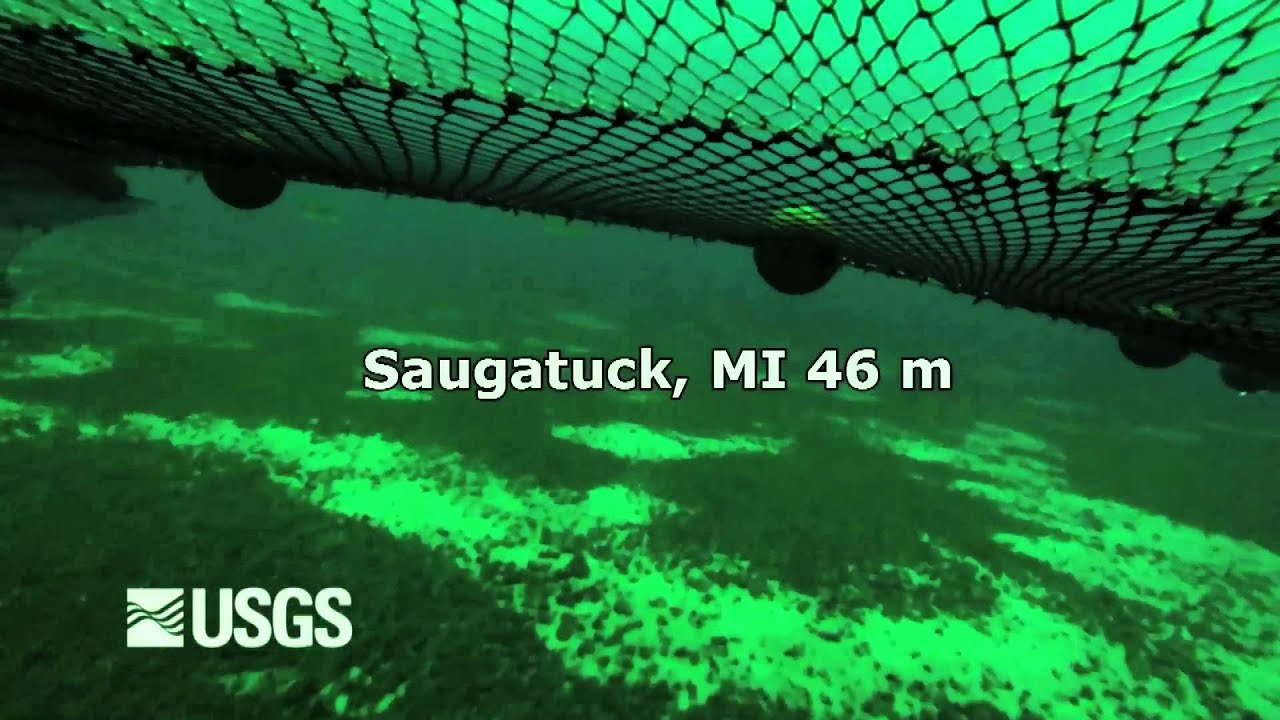 Usgs Lake Michigan 2013 Bottom Trawl Video Youtube