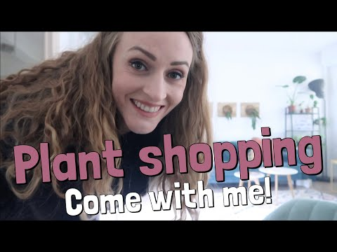 Houseplant Shopping Tour In France