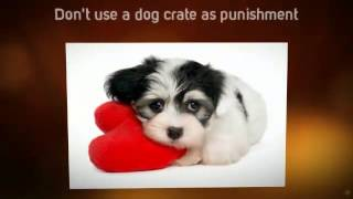 Puppy Potty Training Tips | Tips For House Training a Puppy | Tips on Puppy Training | Toilet
