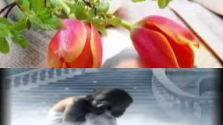 woh kehti hai suno jana urdu poetry new poem and remix with gazal by favesland.mpeg