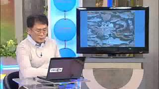 TV 평생대학  Pyeongsaeng Univ노성두 들…