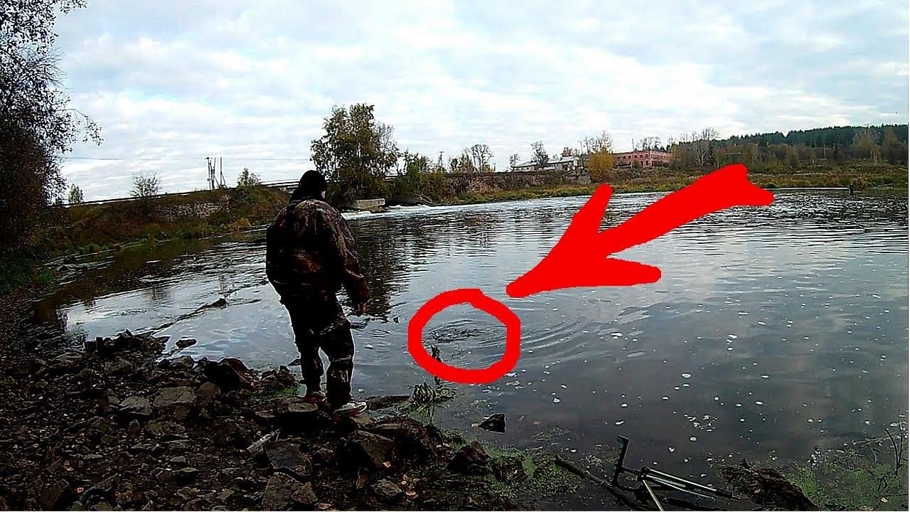 частный пруд для рыбалки