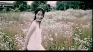 Jay Chou- 七里香 | Qi Li Xiang - Orange Jasmine MV With Lyrics