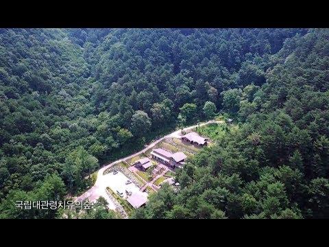 KBS 영상앨범 산_오대산 국립공원, 국립대관령치유의숲