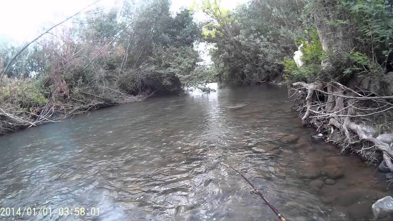 Pesca truchas rio uble febrero 2015 doovi for Como criar truchas
