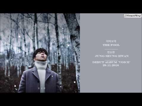[HAN/ENG] Jung Seung Hwan 정승환 - The Fool 이 바보야