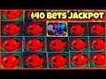 HUGE LIL LADY BUG SLOT JACKPOT/ FREE GAMES/ $40 BETS/ HIGH LIMIT