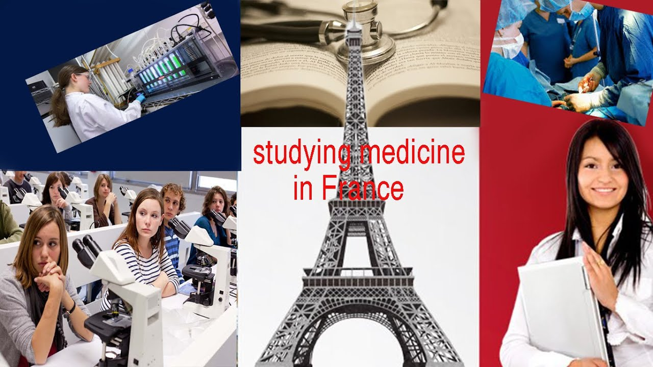 studying medicine in France  I channel  Education