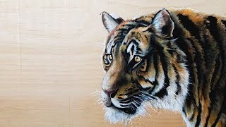 Realistic Tiger Painting