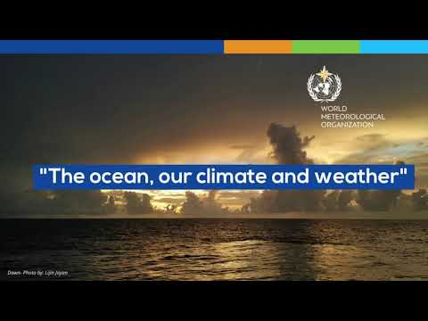World Meteorological Day - Animation - 1