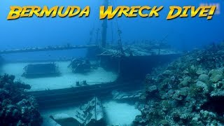 Diving the Hermes Wreck Bermuda | JONATHAN BIRD