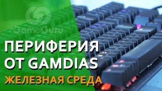 ✅ Бюджетные мыши и механика GAMDIAS #ЖЕЛЕЗОGG