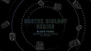GROTEK BIOLOGY SERIES - BLACK PEARL