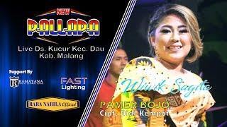 Pamer Bojo [Cipt.Didi Kempot] Wiwik Sagita New Pallapa Kucur Dau Malang 2019