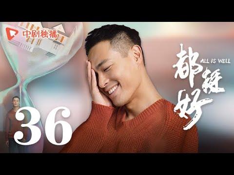 都挺好 36(姚晨、倪大红、郭京飞、高露 领衔主演)